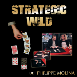 STRATEGIC WILD (cartes...