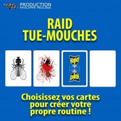 RAID Tue-Mouches Cartes à...